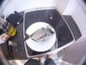 petit CR du 16/08/2012 et cr des dernieres sortie  Gopr0010