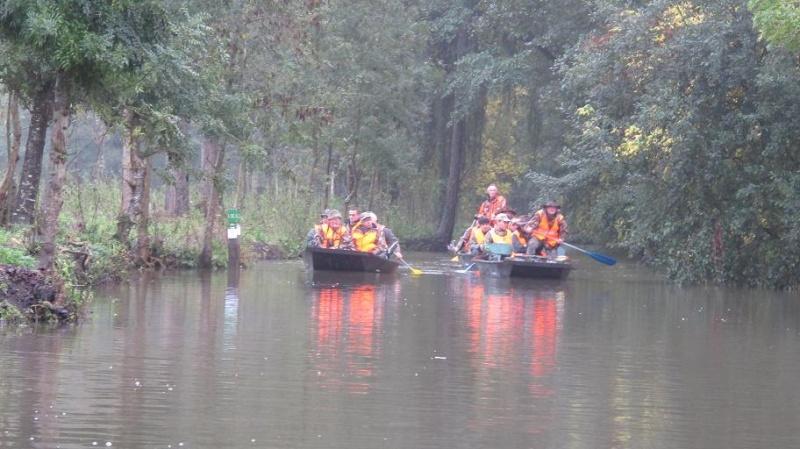 Grand Gibier en Octobre et en Charente Poitou Oct20117