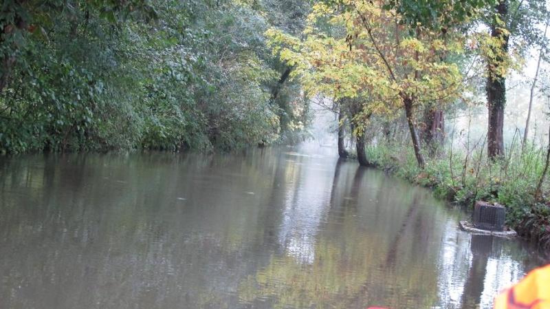 Grand Gibier en Octobre et en Charente Poitou Oct20118