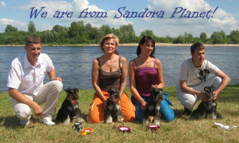 Best regards from Lithuania! Sandor12
