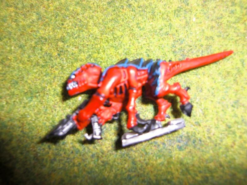 Mis primeros Warhammer Cimg5515