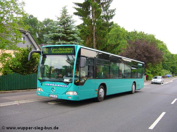 Eure Busbilder - Seite 2 Ossenb11