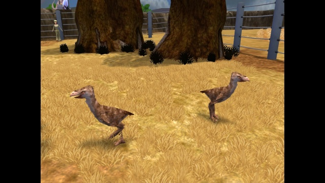 El Zoo Prehistorico Privado Pic3212