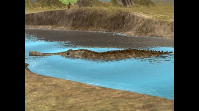 El Zoo Prehistorico Privado Pic811