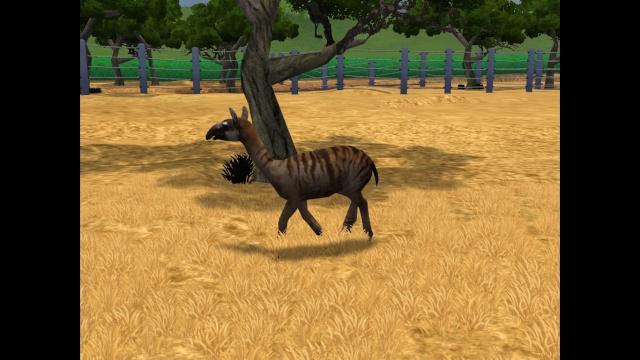 El Zoo Prehistorico Privado Pic8910