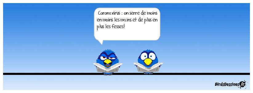 L'image du jour - Page 4 Boudu110