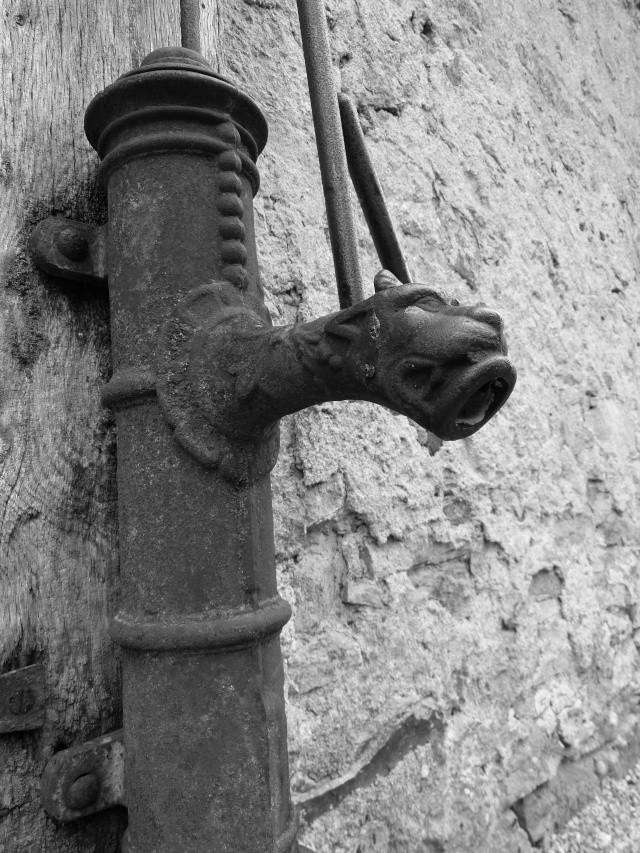 Galerie de Flogribouille {MAJ 25/08/2012} - Page 2 P1020810