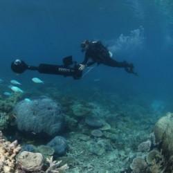 Google Street View plonge dans les fonds marins 00000010