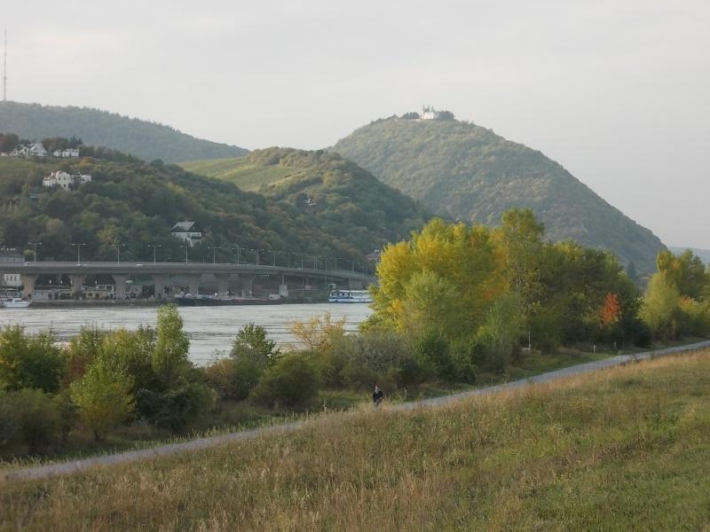 Золотая осень Dscn1511