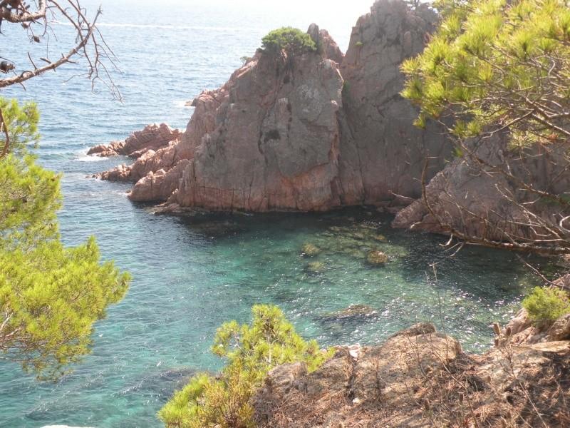 Скалы и Море Dscn8211