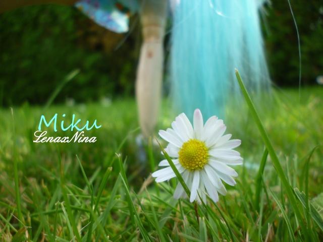 Les doll's de Rei. ♥Nina♥Amy♥Miku♥Lola♥ - Page 2 P1100218
