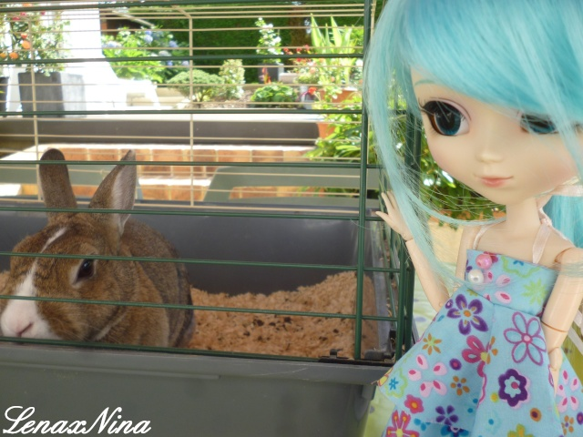 Les doll's de Rei. ♥Nina♥Amy♥Miku♥Lola♥ - Page 2 P1100219
