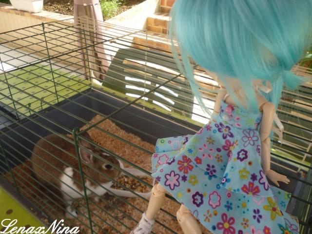 Les doll's de Rei. ♥Nina♥Amy♥Miku♥Lola♥ - Page 2 P1100220