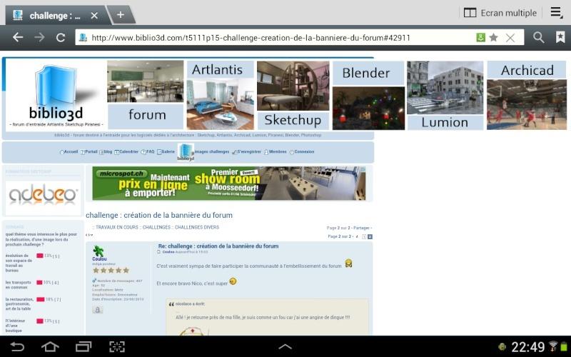 challenge :  création de la bannière du forum  Screen13