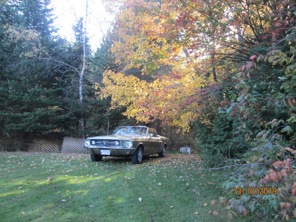 Vos photos d'automne  07110