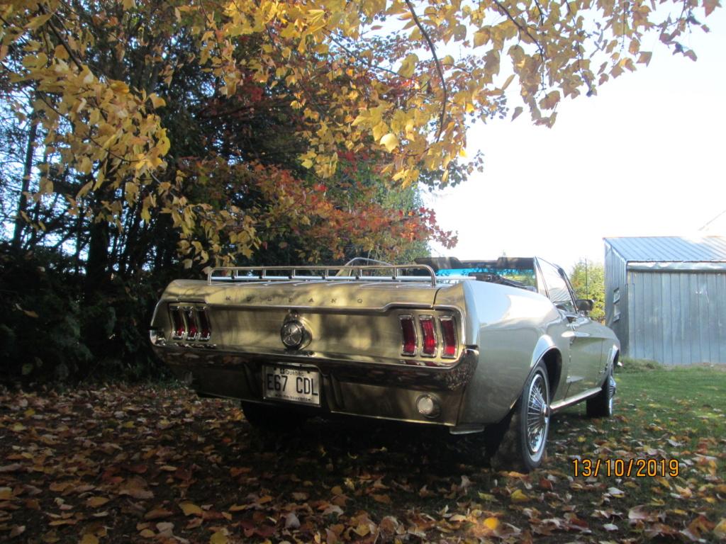 Vos photos d'automne  07411