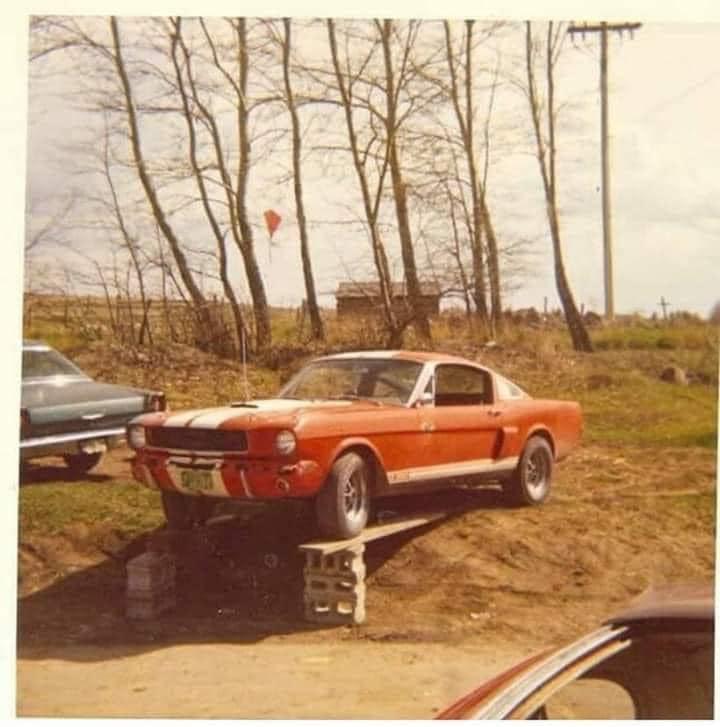Vieille photo qui inclus des Mustang 65-73  - Page 8 21109810