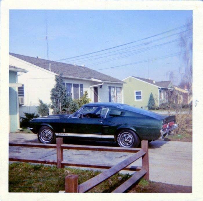 Vieilles photos qui inclus des Shelby 40365410