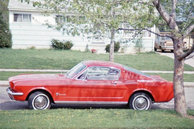 Vieille photo qui inclus des Mustang 65-73  57139110