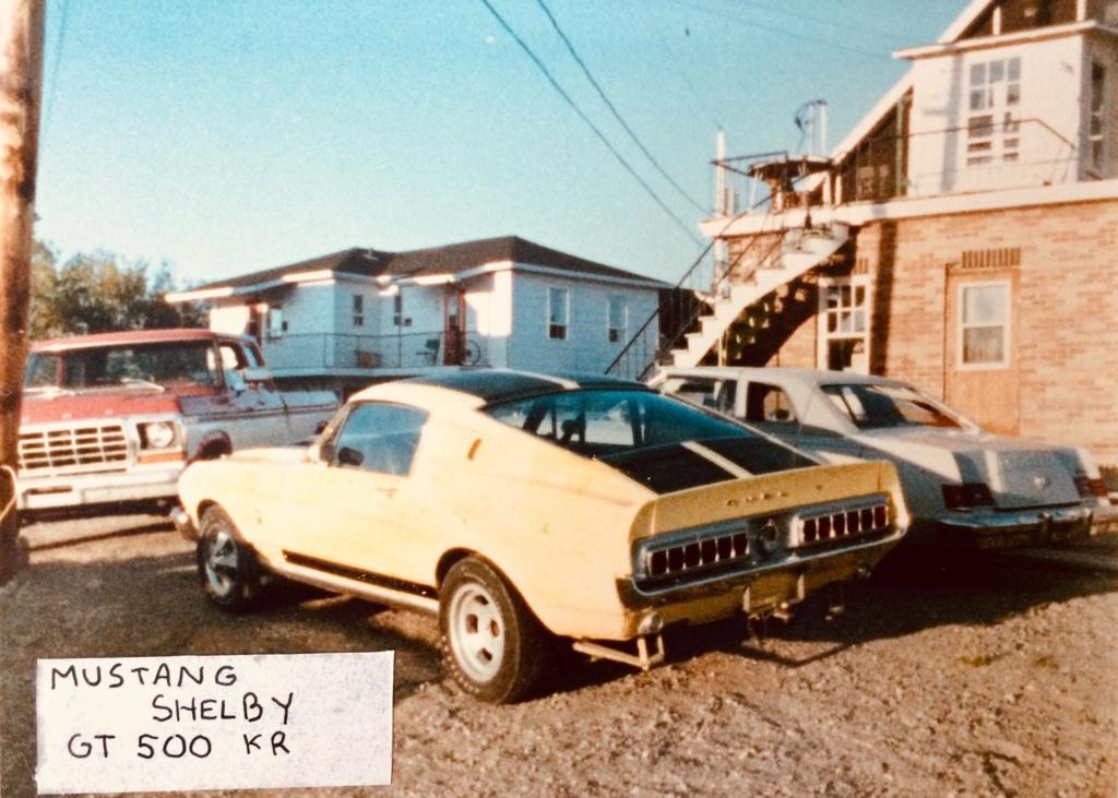 Vieilles photos qui inclus des Shelby 61241010