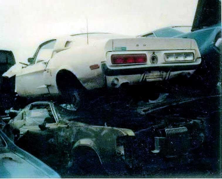 Vieilles photos qui inclus des Shelby Shelby32