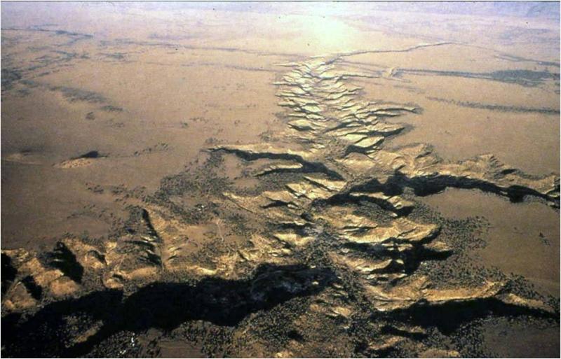 ~~Prehistoria~~ Paleoantropología Imagen11