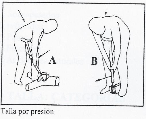 ~~Prehistoria~~ Tecnología lítica y ósea Tecnic12