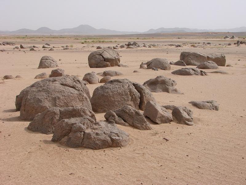 Ma passion c'est le désert Dsc00210