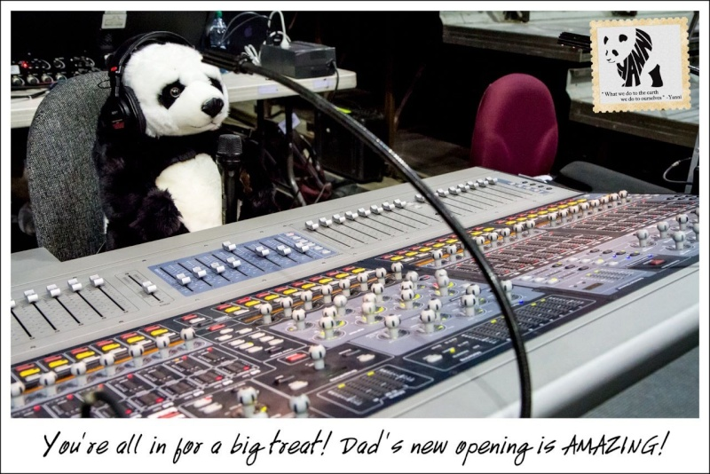 Yanni adopte un bébé panda 41337311
