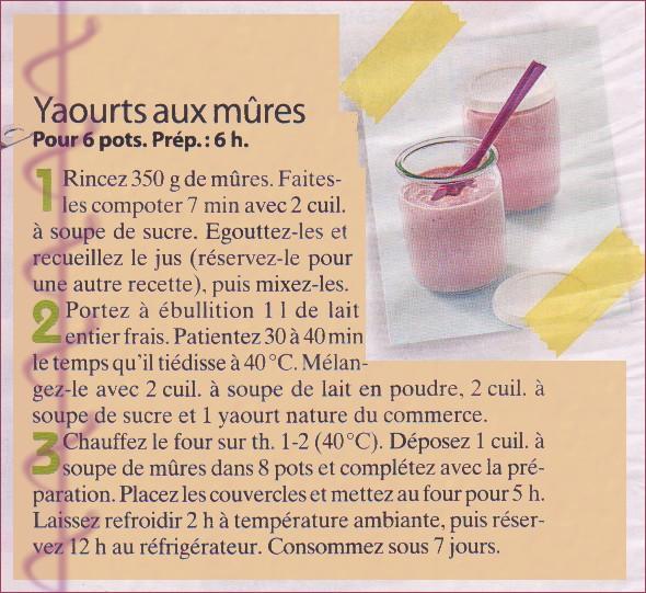 Yaourts aux mûres Yaourt10