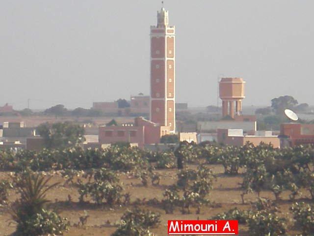 مكتبة صور أولاد ميمون Mimoun27