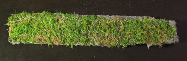 Construction terrarium lowland pour Nepenthes Constr11