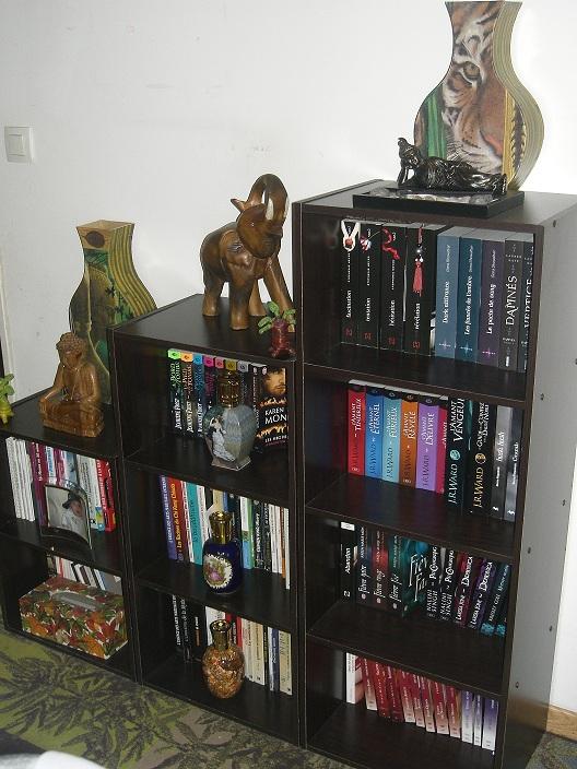 Photos - Et si on se montrait nos bibliothèques ? Cimg3614
