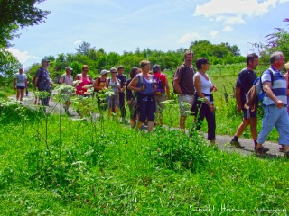 RANDONNEE DES CADEULES du 22 JUILLET 2012 Dscf9414