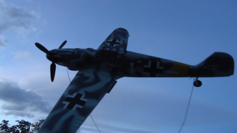 Mes avions en vol..... Dsc02202