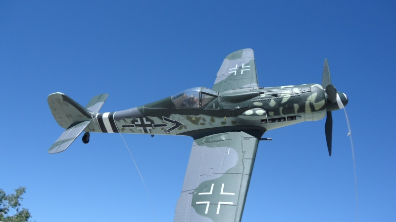 Mes avions en vol..... Dsc02488