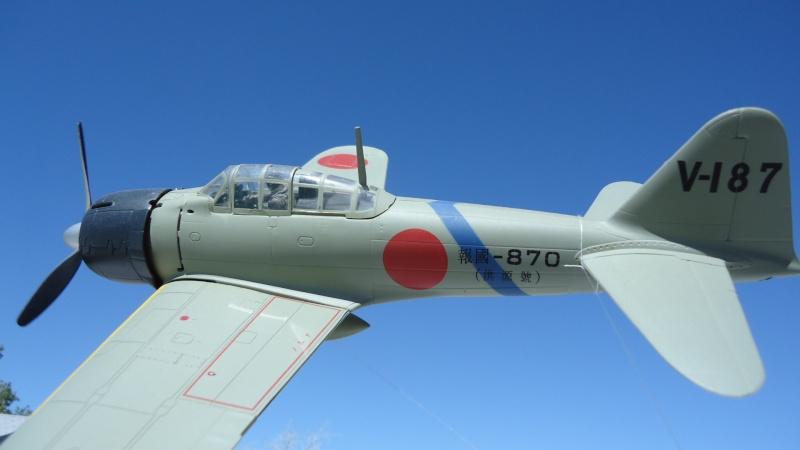 Mes avions en vol..... Dsc02491