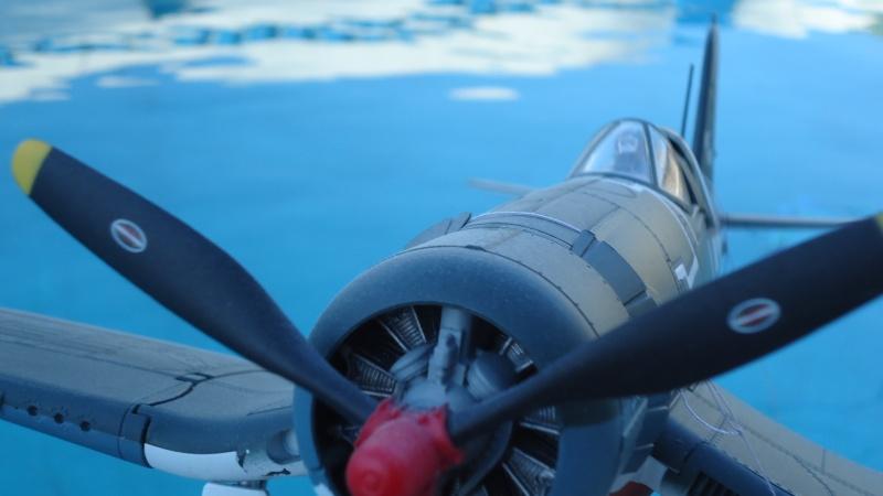 Mes avions en vol..... Dsc02498