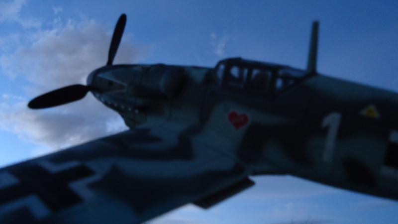 Mes avions en vol..... Dsc02513
