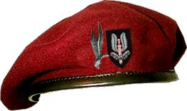 Nuestra Uniformidad: DPM 15778312