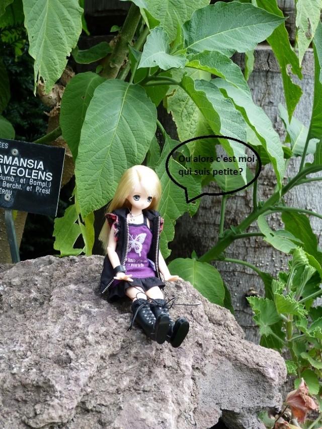 Kimiko ma Pure Neemo Himeno!! Photos23