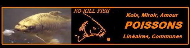 no-kill-fish 30v22r10