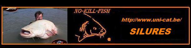no-kill-fish 30v22r12