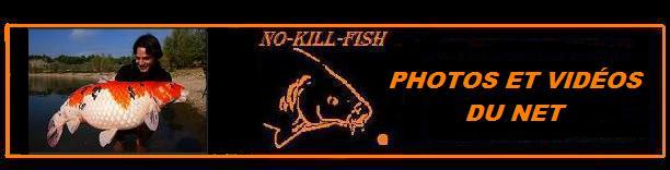 no-kill-fish 30v22r13