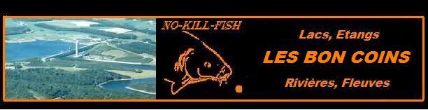 no-kill-fish Xe51cm11