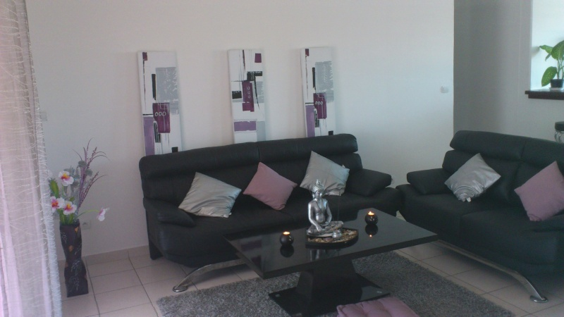 Sahina Idees Deco Pour Salon