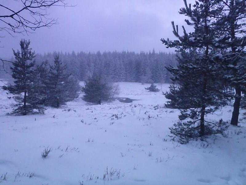 Sortie hivernale dans la Margeride. Photo_11