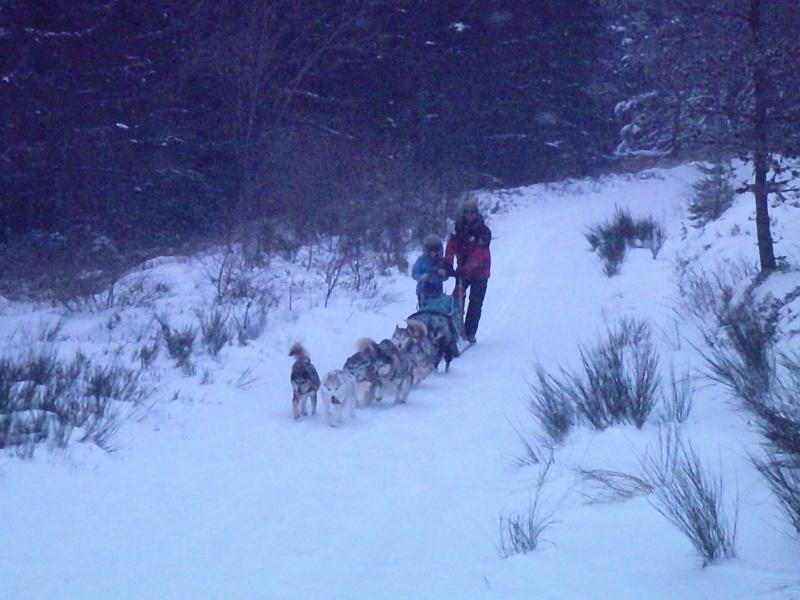 Sortie hivernale dans la Margeride. Photo_12