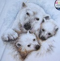 recherche kit Dimensions Mothers Love Counted Cross Stitch Kit 35191 Polar Bear Ours_b10