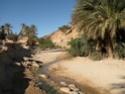 camping de Figuig 26_un_12